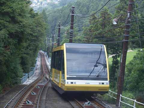 sarakura2.jpg