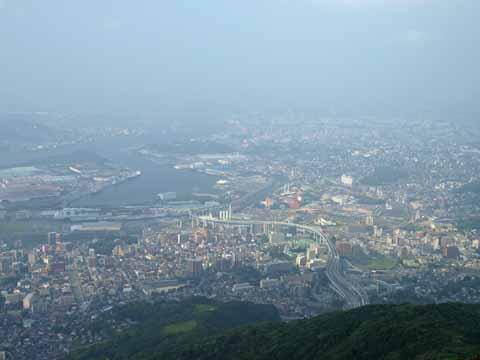 sarakura4.jpg